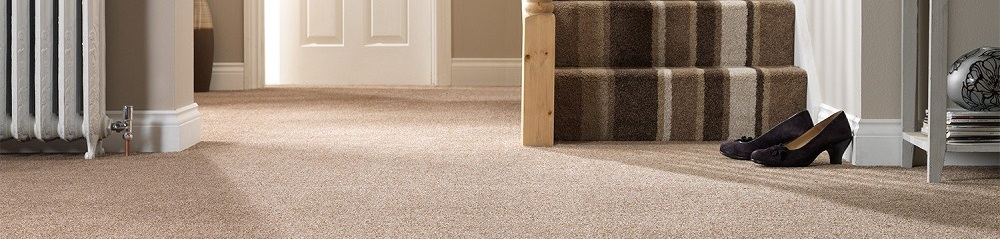 The Carpet Man Suppliers Of Carpets And Rugs Throughout